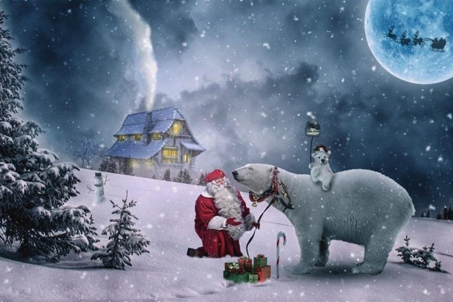 grafika świąteczna - mikołaj z białym niedźwiedziem
