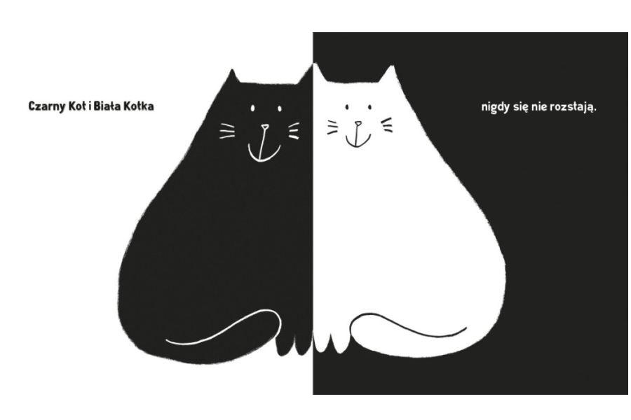 rysunek z książki - czarny kot na białym tle i biały kot na czarnym tle