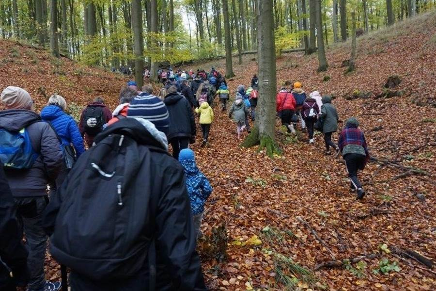 Grupa młodzieży wędrująca po Puszczy Bukowej na Leśnej Sobocie