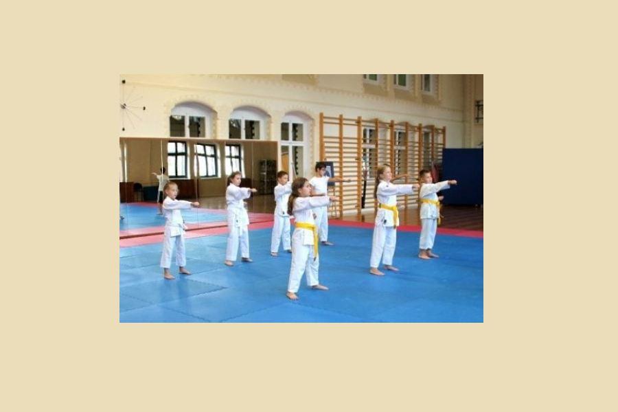 Karatecy ćwiczący kopnięcie yoko geri keage w parze, trzmają się za dłonie. W tle inni karatecy wykonujący te samo zadanie.