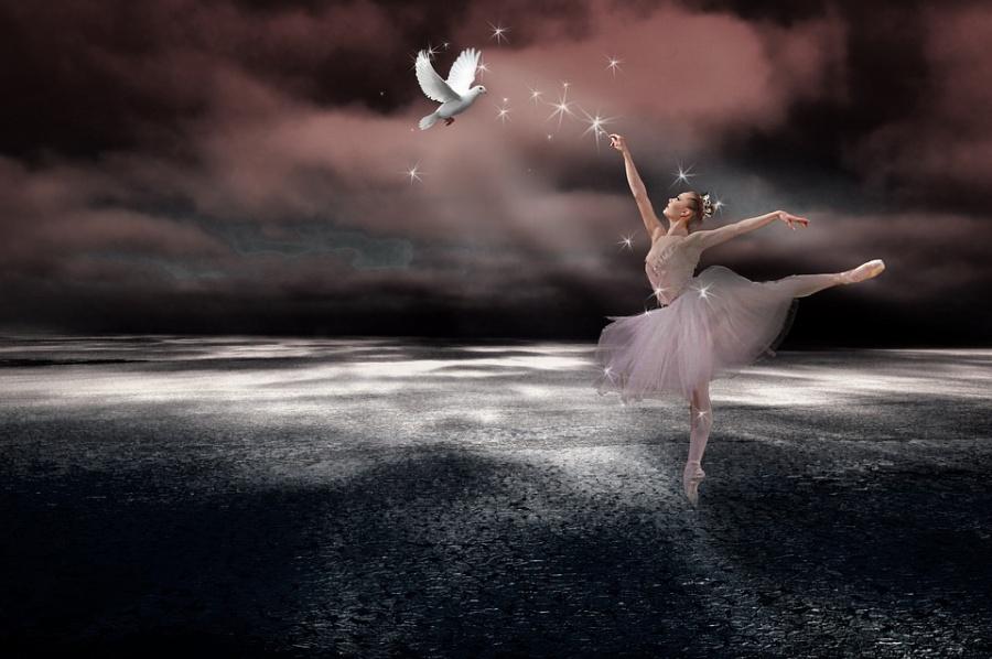 grafika przedstawia baletnicę z gołębiem