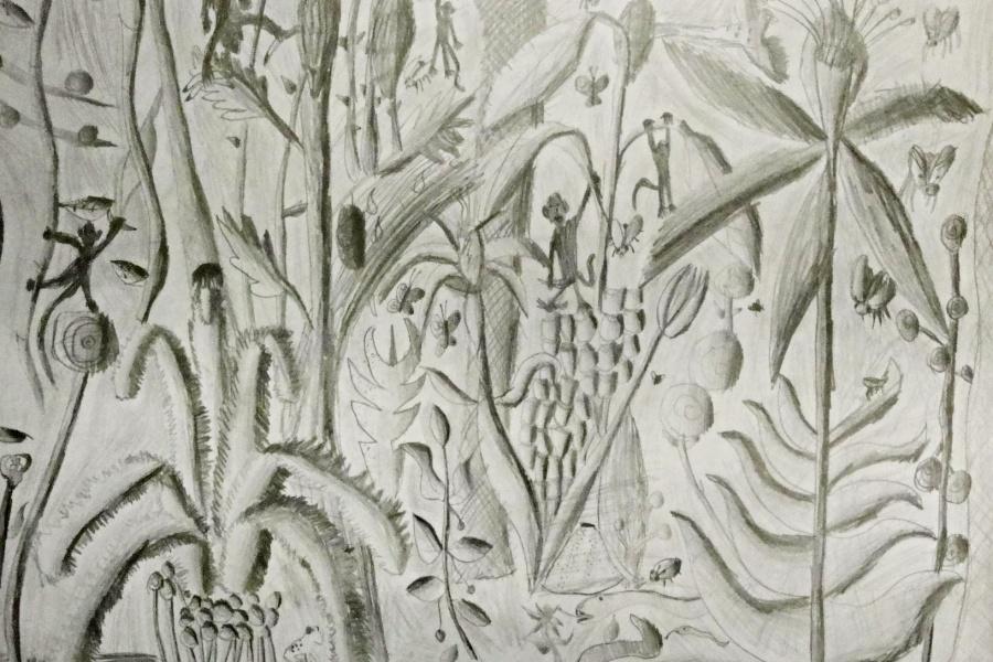 praca plastyczna widać narysowane ołówkiem różne dziwne rośliny,owady,ptaki , małpy.