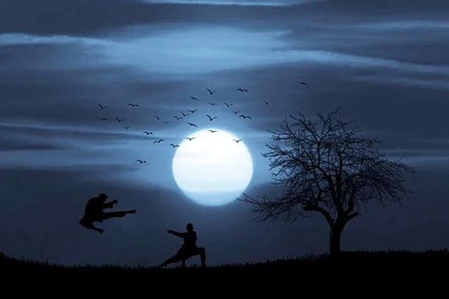 Na ilustracji dwóch karateków walczących ze sobą w blasku księżyca.