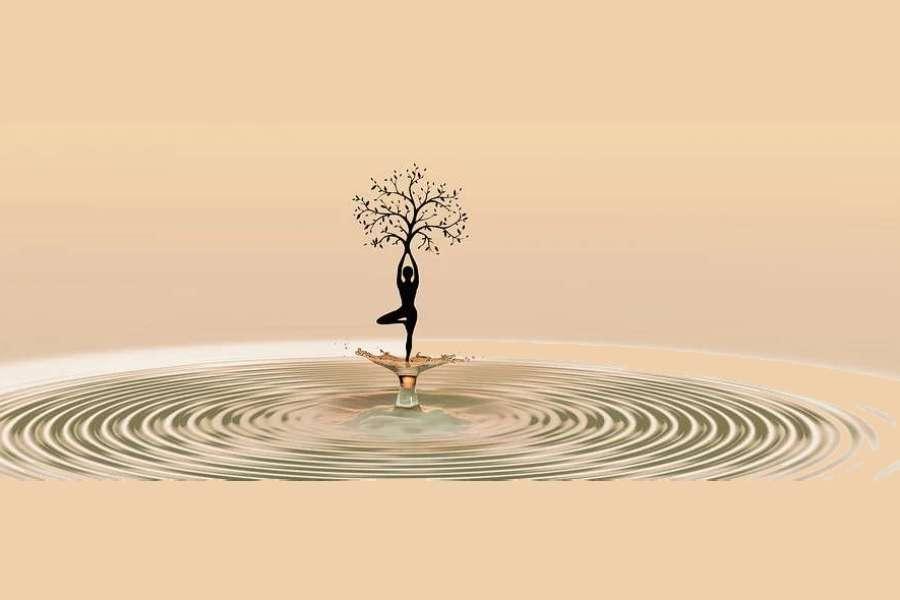 Zdjęcie przedstawia postać kobiecą medytującą w wodzie, trzymającą w dłoniach drzewo.