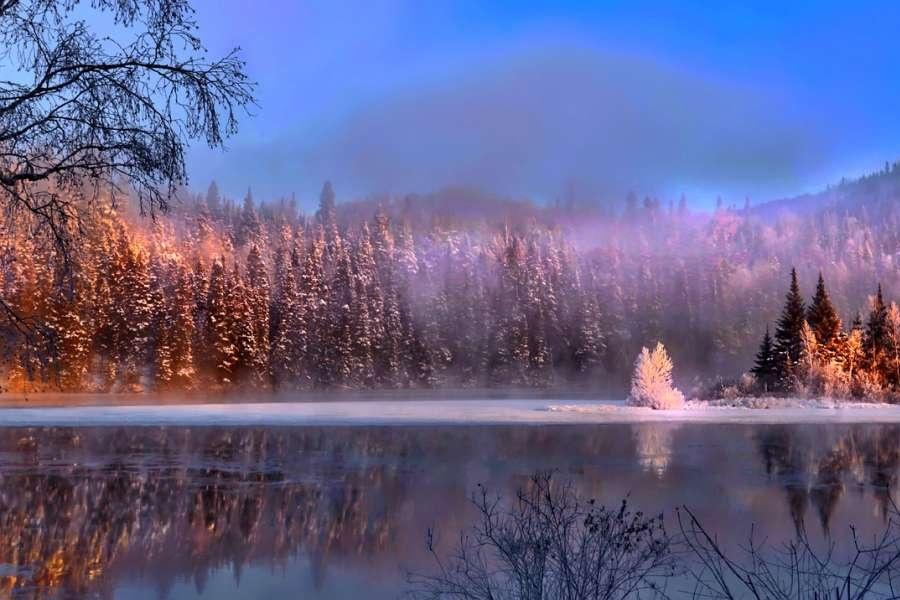 zjecie przedstawia las oraz jezioro podczas zimy