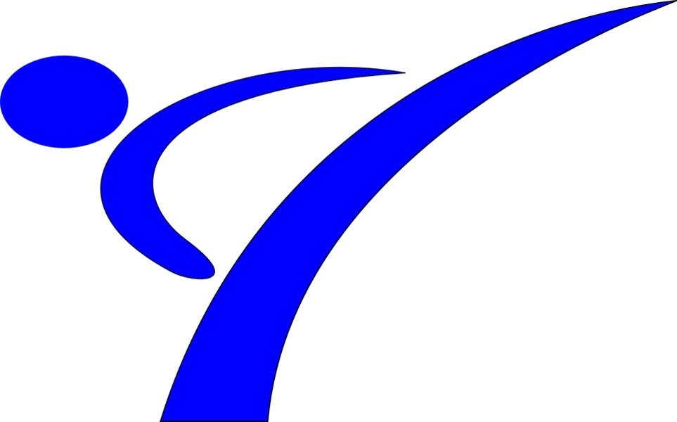 grafika w kolorze niebieskim przedstawiająca karatekę