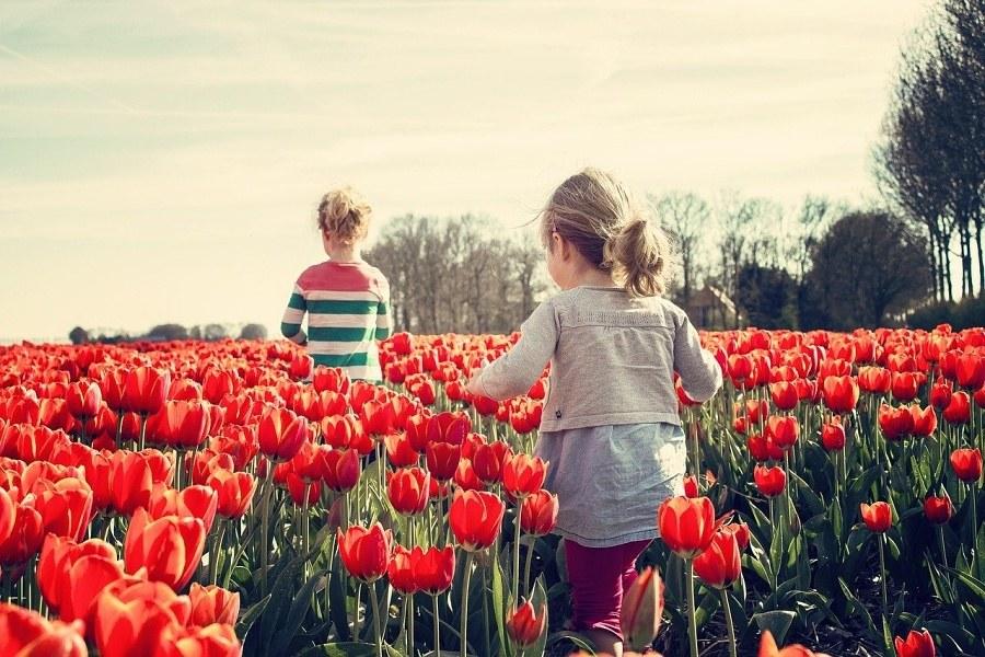 dzieci na tulipanowej łące