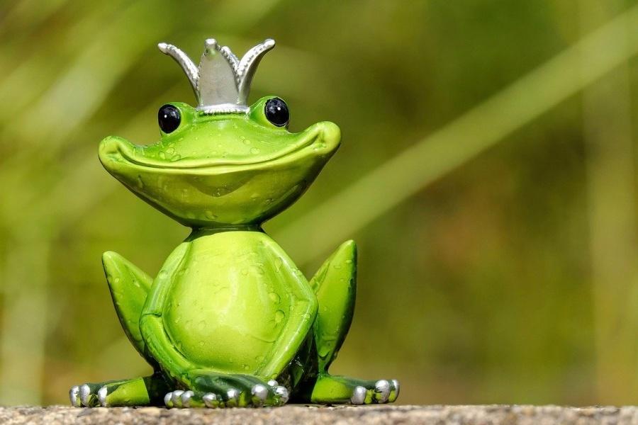 figurka żaby w koronie