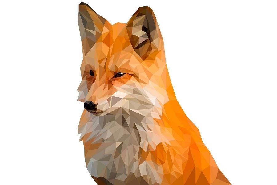 grafika rudo-białego lisa
