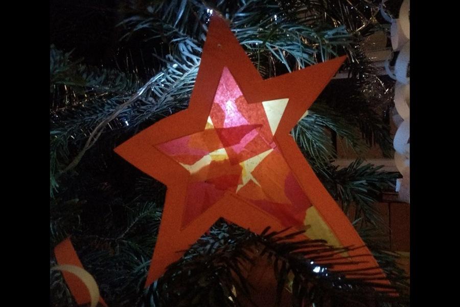 gwiazda z papieru na gałęzi choinki