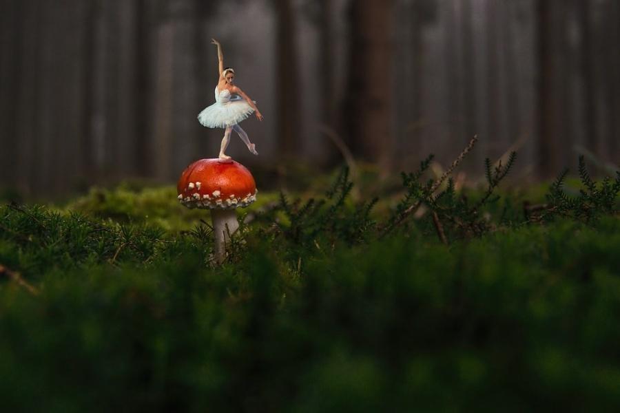 Zdjęcie przedstawia pejzaż leśny z baletnicę stojącą na grzybie w pozie klasycznej.