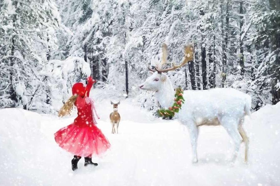 Zdjęcie przedstawia zimę, tańcząca dziewczynkę i leśne zwierzęta.
