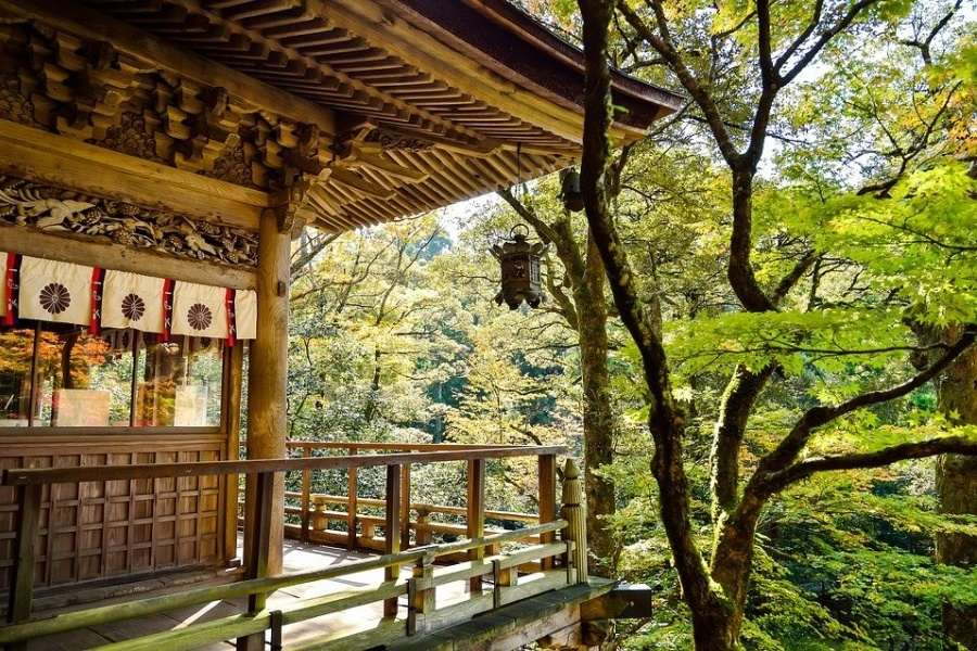 na zdjęciu budynek tradycyjnej zabudowy japońskiej w lesie