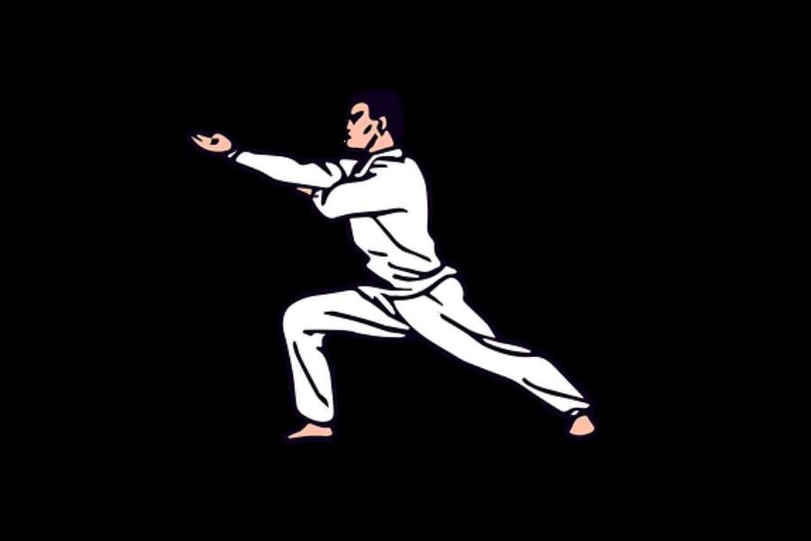 grafika przedstawiająca karatekę