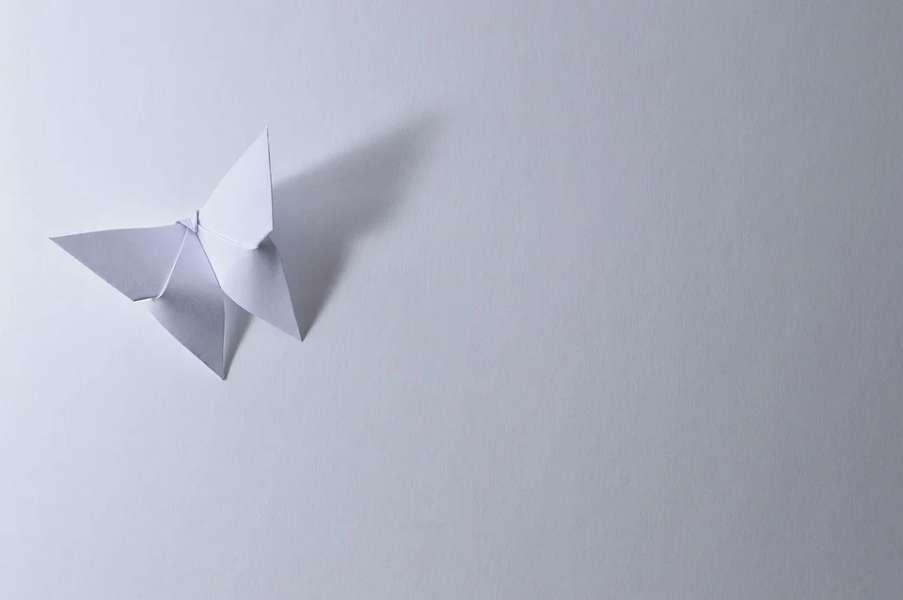motyl z origami