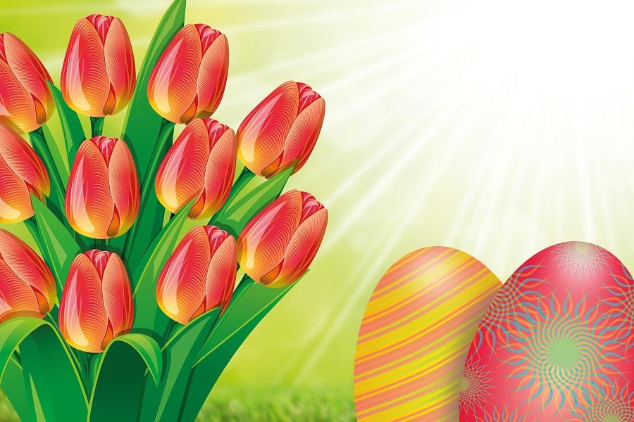grafika z tulipanami i pisankami