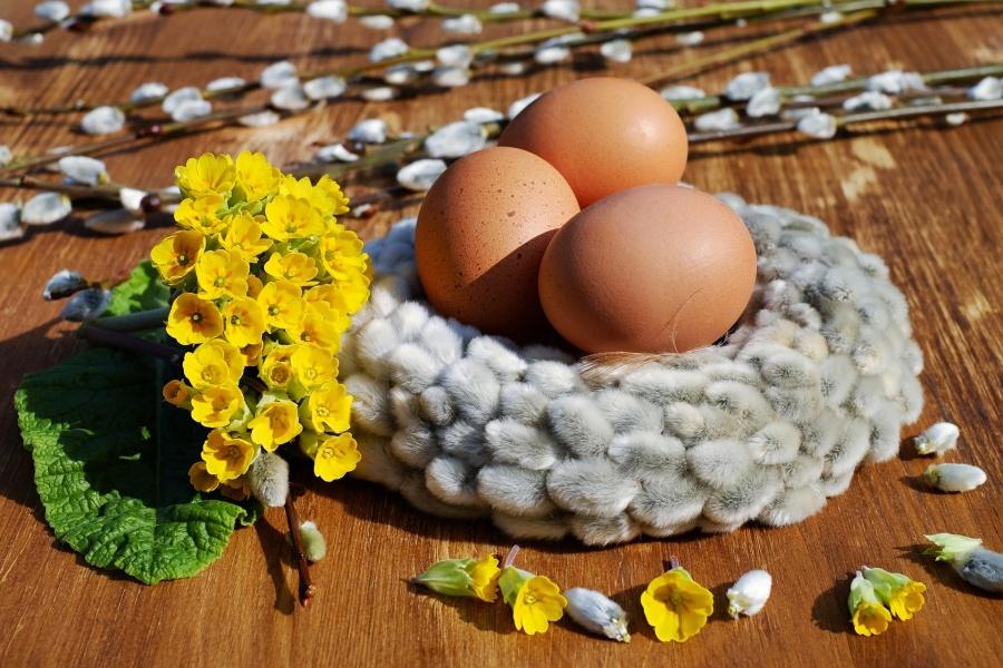 wielknocny stroik z jajek i bazi